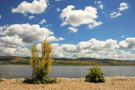 serbia landscape: Danube riverbank in Serbia on border with Romania, landscape over scenic blue sky Stock Photo