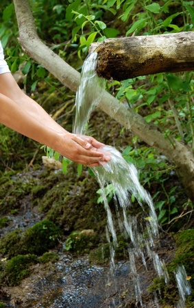 washing hands by spring water under wooden gutter over green natural background photo
