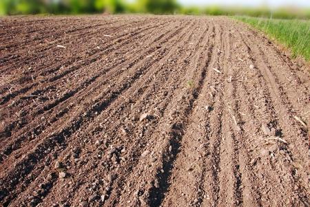 ploughed field: plowed field, ploughed brown earth rural landscape