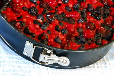 black mold: top of prepared cheesecake in baking mold with various fruits and berries