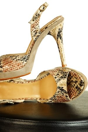 pair of fashionable sexy snake designed high heeled shoes over white photo