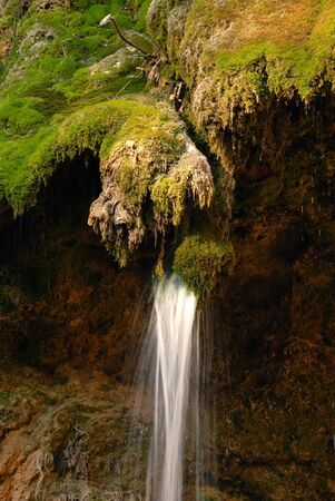 falling water stream over green moss at sunny day photo