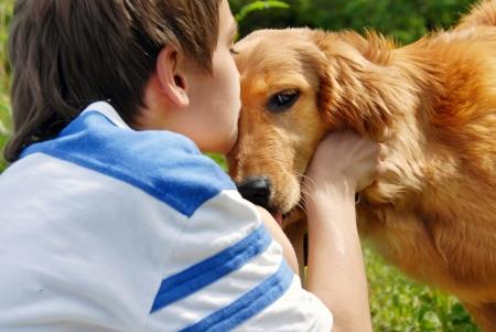 little boy kissing golden retriever dog closeup Standard-Bild