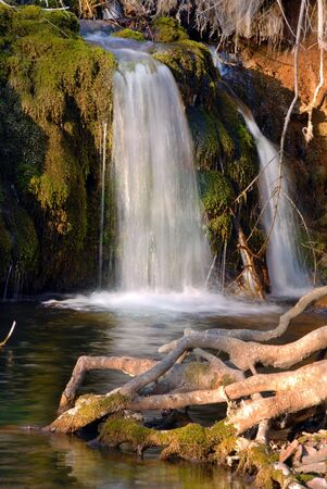 falling water stream over green moss at sunny day Stock Photo - 13013723