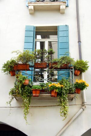 terrace and window of building in Italy, Padova, with flowerpots and blooming flowers photo