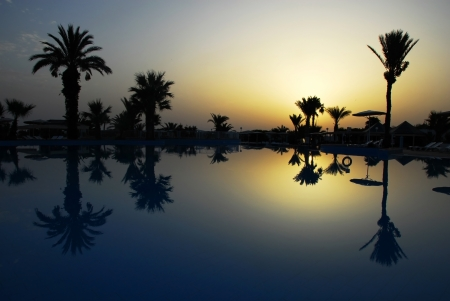 palm trees silhouette: dawn at early morning over peaceful still swimming pool with palm silhouettes in summer resort in Tunisia
