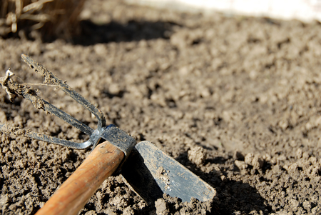 hoe: one dirty gardening hand tool - hoe in dirt closeup