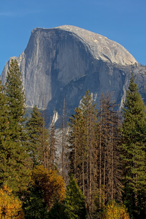 Half Dome in Yosemite National Park in California Stock Photo