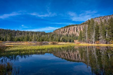 Trees around the lake in Mammoth Lakes, California