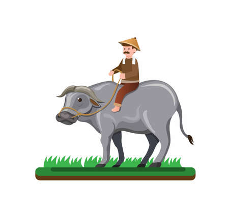asian farmer man riding buffalo in grass rice field, outdoor farm countryside activity people in cartoon flat illustration vector