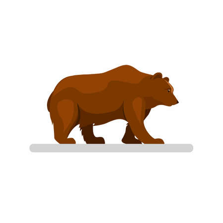 big brown wild bear walking alone in woodland forest, mascot character in cartoon illustration vector isolated in white background Çizim