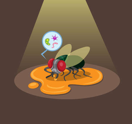 flies land on food scraps on the floor with bacteria, dirty insect in cartoon flat illustration vector