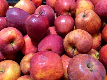 foodstill: Pile of juicy apple
