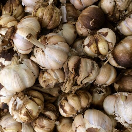 Pile of  Brown Garlic close up