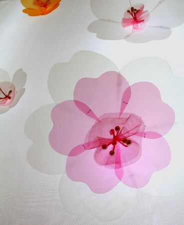 pink floral on white background