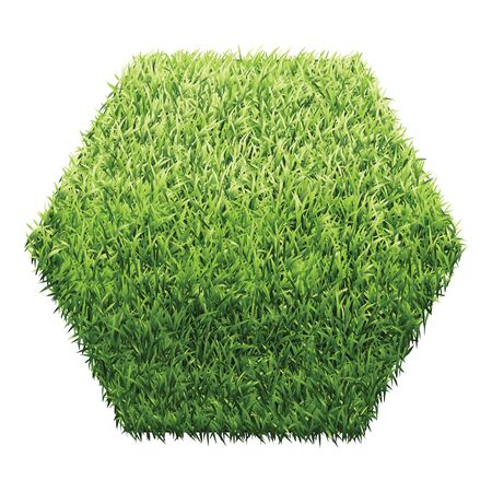 grassy field: Hexagon of green grass. A lawn with gradient light green to dark green.