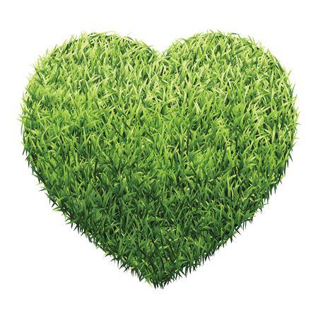 grasslands: Hexagon of green grass. A lawn with gradient light green to dark green.