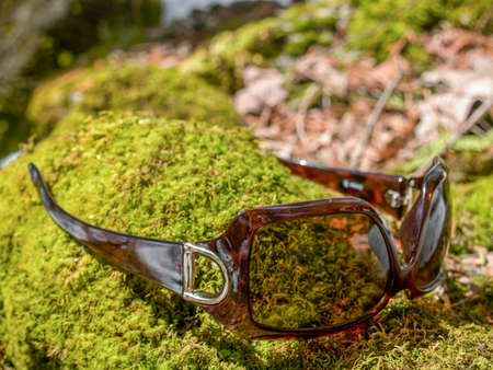Brown square shaped sunglasses upside down on a green mossy rock.
