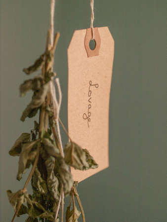 Hanging lovage herb to dry beside a tag that says Lovage.