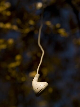 earphone: Single dirty white earphone from iPhone hanging out of a tree.