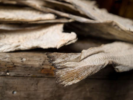 exhibit: Exhibit of dried fish tails in the Maritime Museum, Isafjordur, Iceland.
