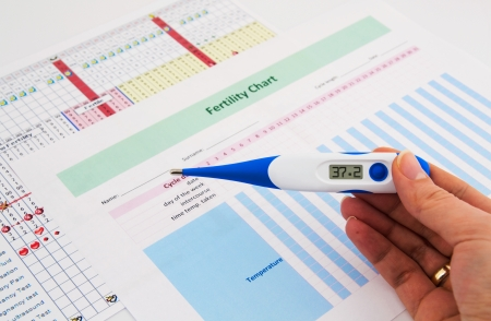 Electronic thermometer in woman hand  Fertility concept
