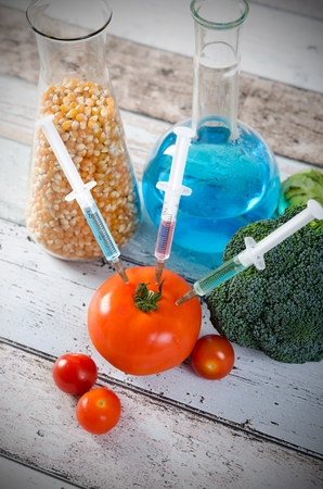 modified: Syringe in tomato. Genetically modified food concept on wooden background.