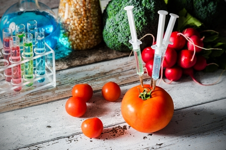 genetically: Three syringes in tomato. Genetically modified food concept on wooden background. Stock Photo