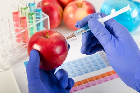 genetically: Analyst injects liquid into apple. Genetically modified food in lab concept.