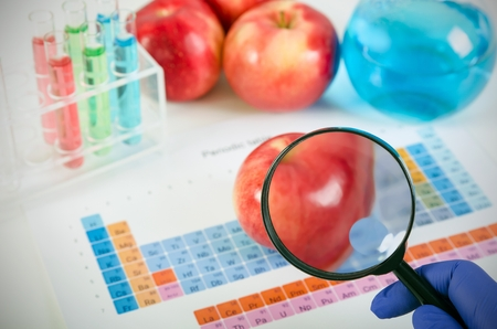 genetically: Lab technician looks through a magnifying glass. Genetically modified food concept.