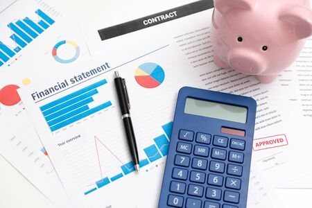 Business and finance concept with piggy bank and documents Zdjęcie Seryjne - 125165271