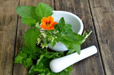 herbs garden photo