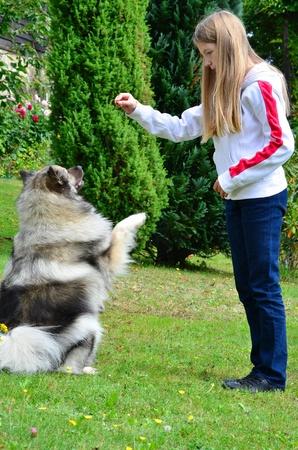 Child dog obedience school photo