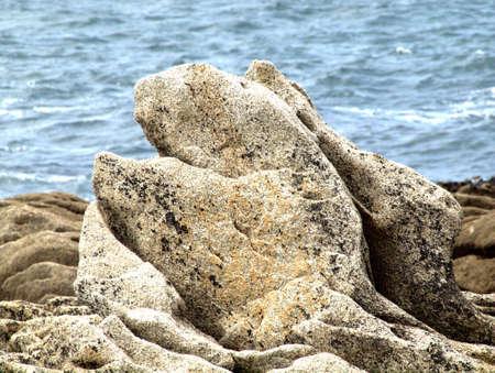 farbe: nach oben steigender Walkopf aus Stein
