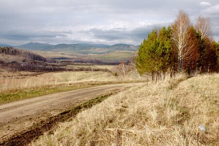 mounts: Altai landscape with mounts, trees, yellow grass and clouds Stock Photo