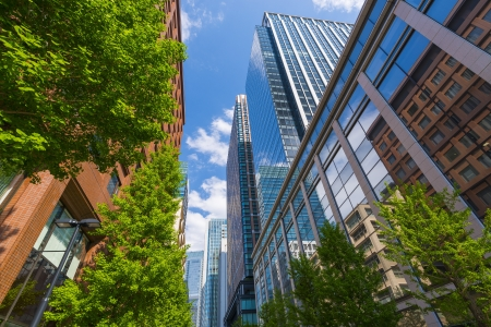 edificios: Verdes y edificios de oficinas