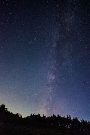 milky way: Milky way and Maple