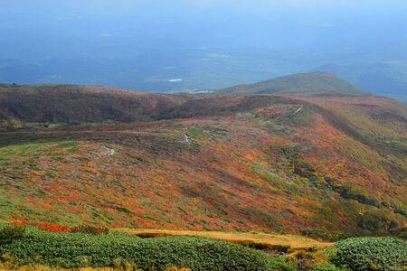 fallscape of mountain