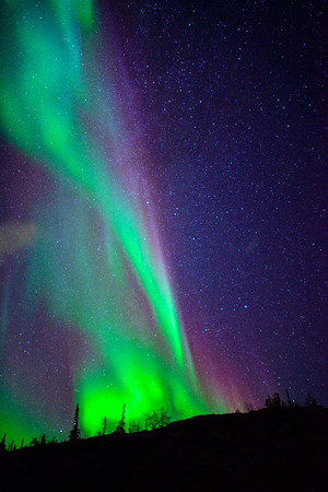 northern lights: aurora