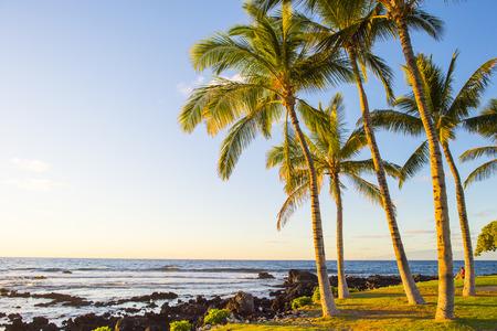 hawaian beach at sunset time Standard-Bild