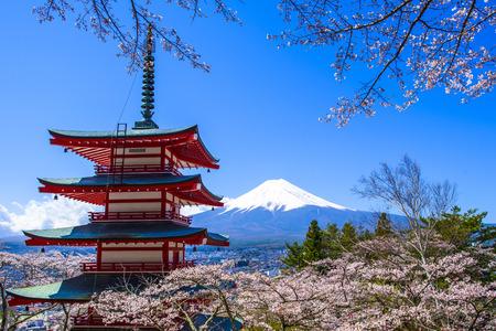 cereza: Chureito Pagoda con sakura & Beautiful Monte Fuji View Foto de archivo