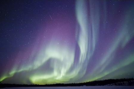 northern light: aurora borealis