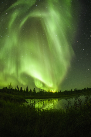 Northern lights aurora borealis in the night sky Standard-Bild