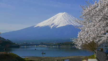Cherry blossoms and Mount Fuji, Scenery too beauty in Japan. photo