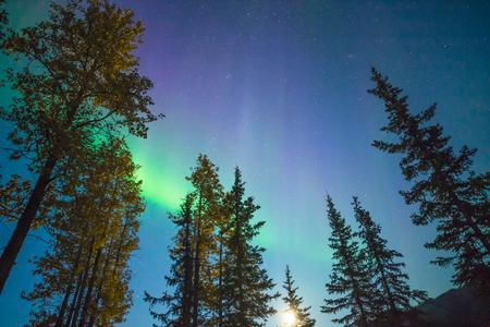 Aurora borealis in Brooks Range