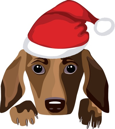 dog wearing a santa claus hat Vector