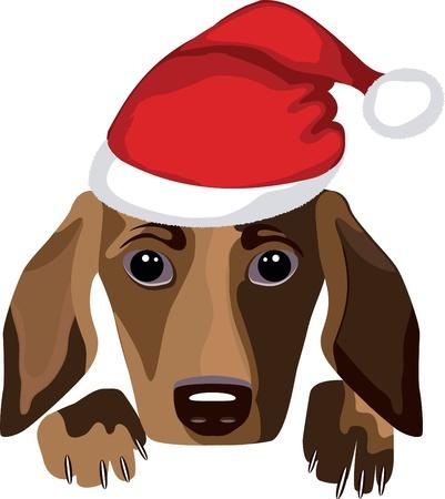 whelp: dog wearing a santa claus hat Illustration