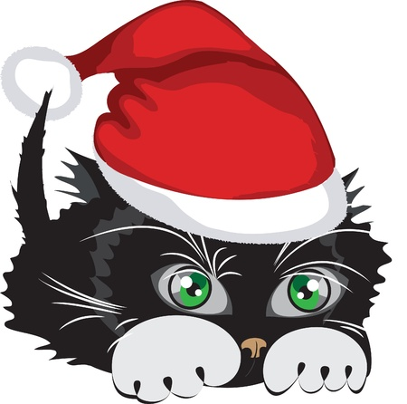 Kitten wearing a Santa Claus hat over white background.