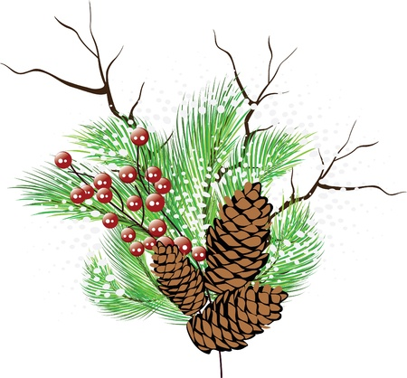 Christmas composition. Branches tree, branch with berries, cones, snow Illustration