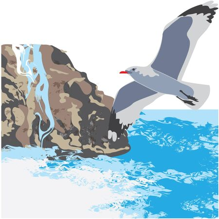 sea gull: Gull against the sea and rocks.  Illustration